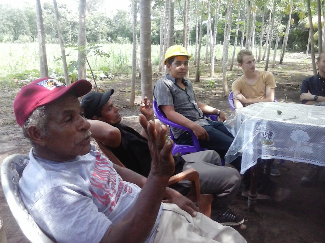 Nach getaner Arbeit ist gut ruhn in Paula Nubias Papaya-Wäldchen! (abgewandeltes Sprichwort)